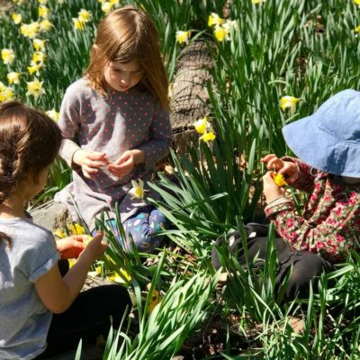 A Nature Preschool Like No Other